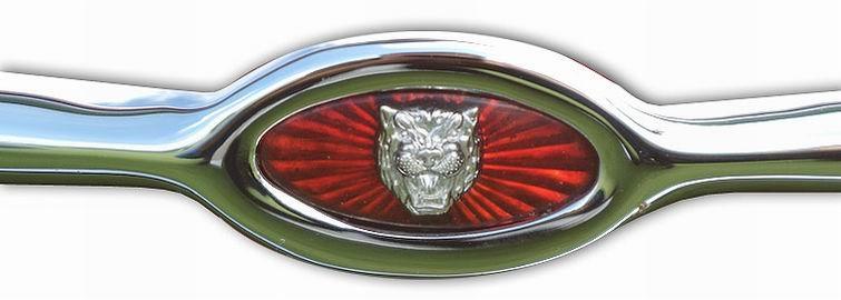 1964. Jaguar E-Type (1964 grille emblem)