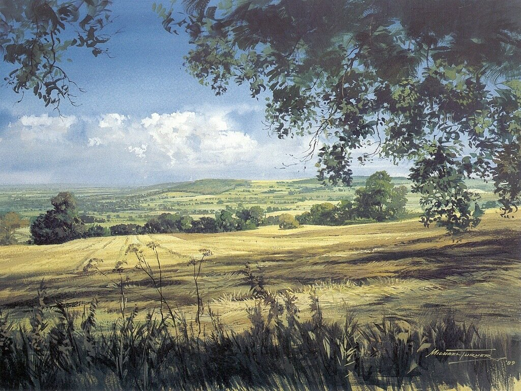 c_mta_midlands-landscape-at-the-height-of-the-english-summer